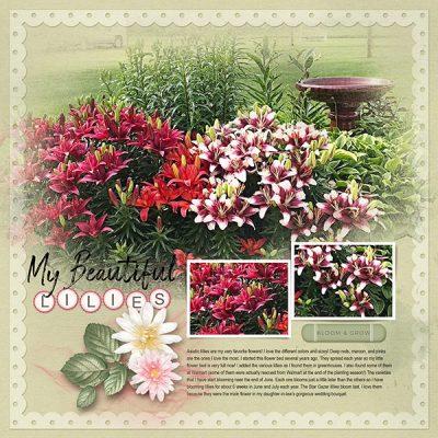 Garden Party Digital Scrapbook Kit